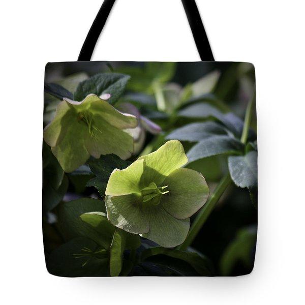 Green Hellebore Squared Tote Bag by Teresa Mucha