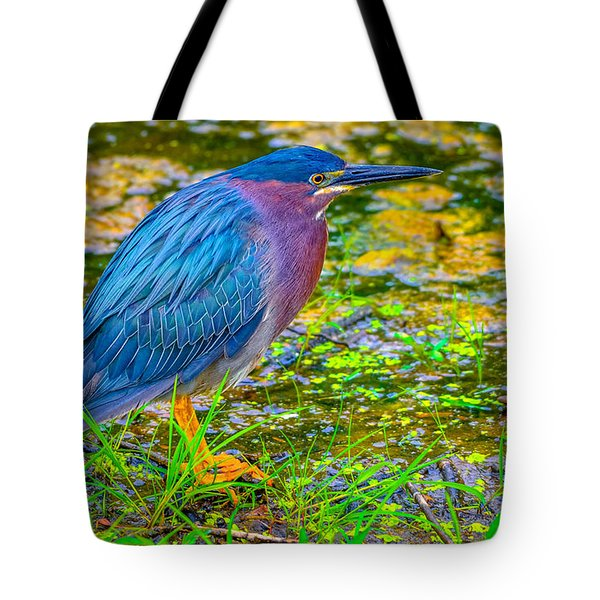 Tote Bag featuring the photograph Green Heron 3 by Brian Stevens
