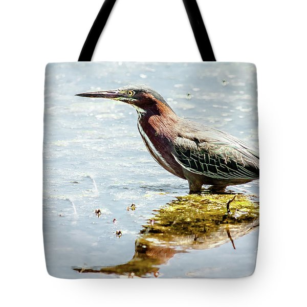 Tote Bag featuring the photograph Green Heron Bright Day by Robert Frederick