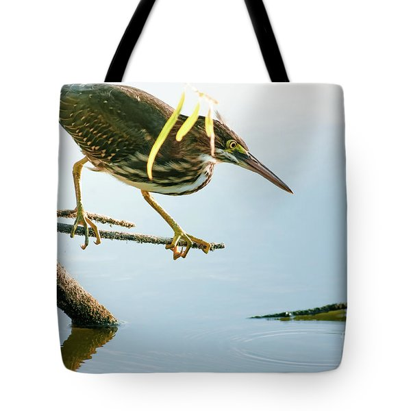 Tote Bag featuring the photograph Green Heron Sees Minnow by Robert Frederick