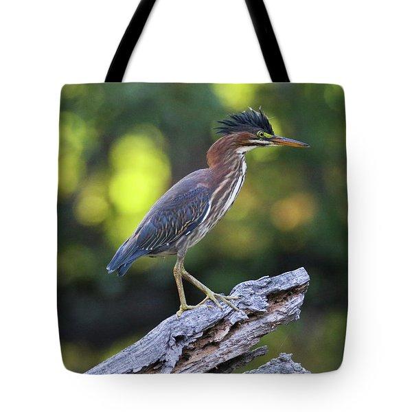 Green Heron Stump Tote Bag