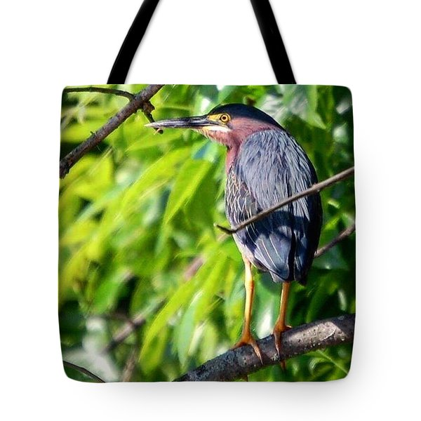 Green Heron Tote Bag by Sumoflam Photography