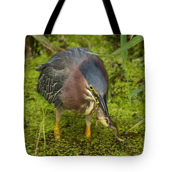 Green Heron With Prey Tote Bag