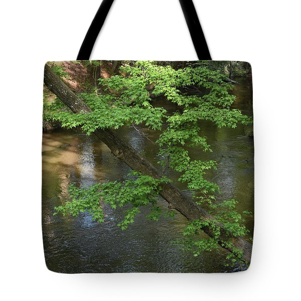 Tote Bag featuring the photograph Green Is For Spring by Skip Willits