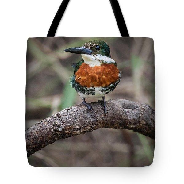 Green Kingfisher Tote Bag