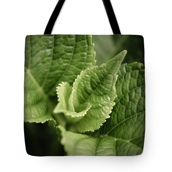 Tote Bag featuring the photograph Green Leaves Abstract II by Marco Oliveira