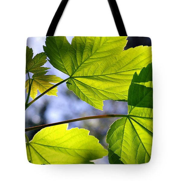 Green Leaves Tote Bag by Carlos Caetano