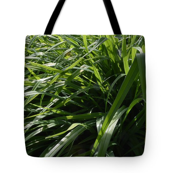 Green Leaves  Tote Bag by Lyle Crump