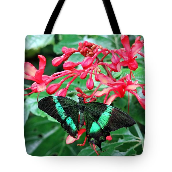 Green Moss Peacock Butterfly Tote Bag