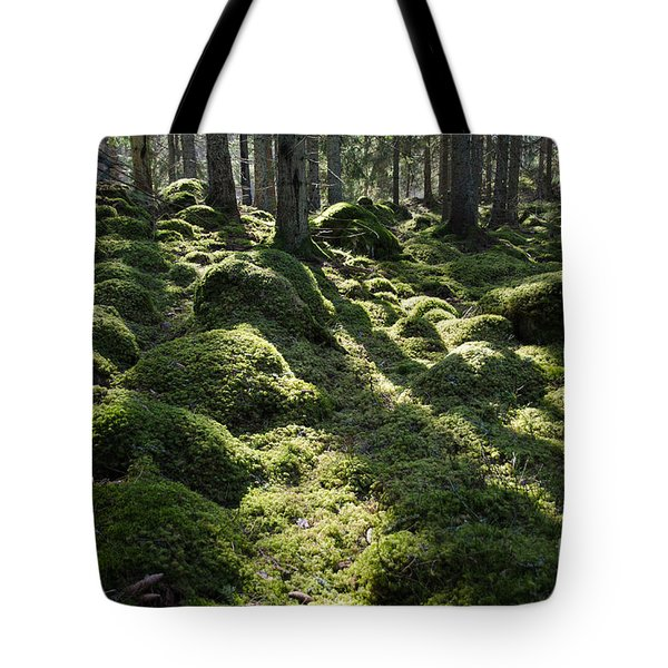 Green Mossy Backlit Forest Tote Bag