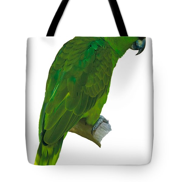 Green Parrot On White  Tote Bag