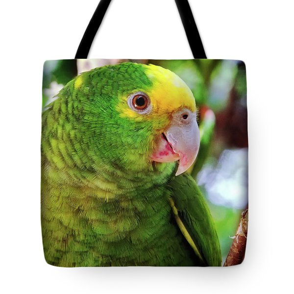 Green Parrot Tote Bag