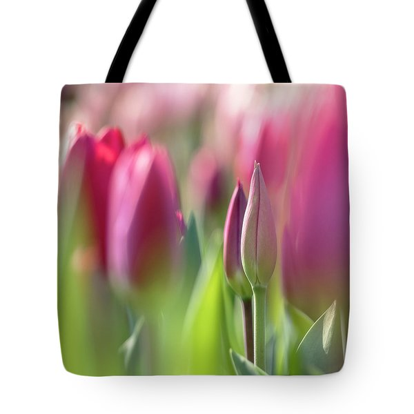 Green Pink Wall Art - Spring Tulips Keukenhof Flower Garden Photography Art Print Tote Bag