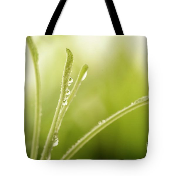 Green Plant With Water Drops Tote Bag