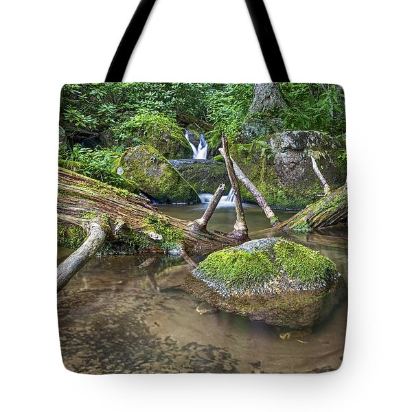 Green Rock Pool Tote Bag