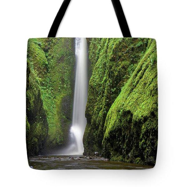 Green Slot Canyon Tote Bag by Jonathan Davison