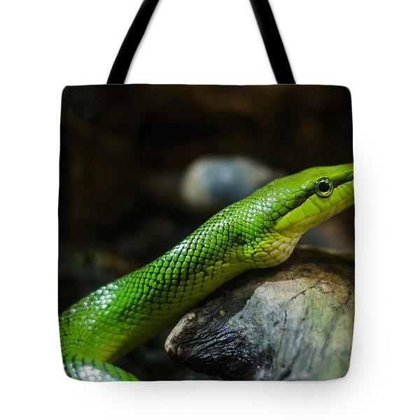 Green Snake Tote Bag by Daniel Precht