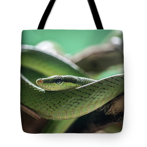 Green Snake On The Branch Tote Bag