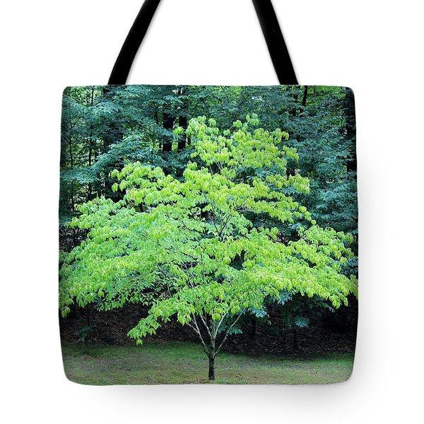 Green Standout Tree Tote Bag