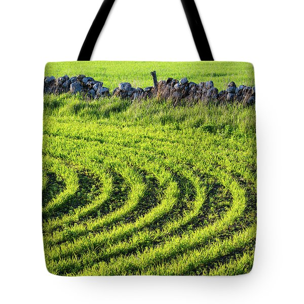 Tote Bag featuring the photograph Green Sunlit Corn Rows by Kennerth and Birgitta Kullman
