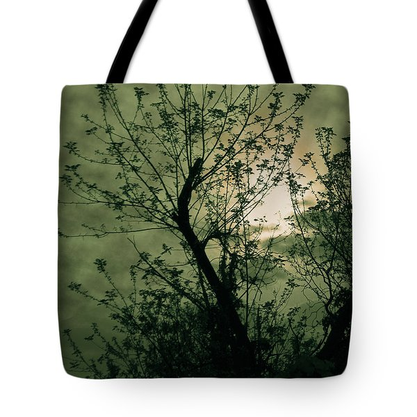 Green Sunset Tote Bag