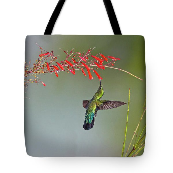 Green-throated Carib Tote Bag