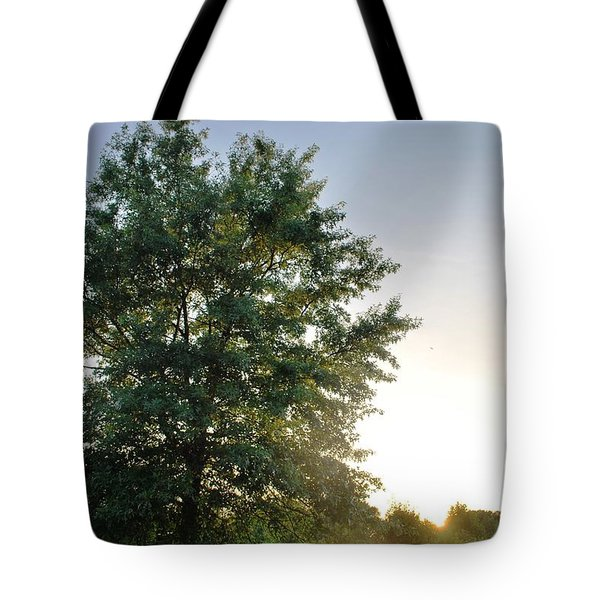 Green Tree Bright Sunshine Background Tote Bag
