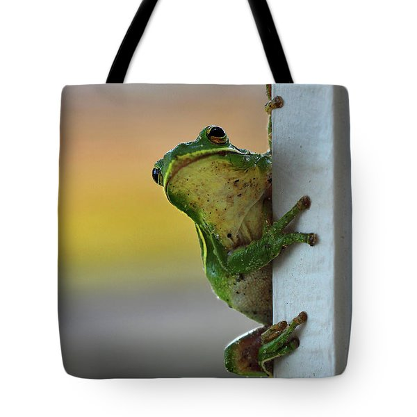 Green Tree Frog  It's Not Easy Being Green Tote Bag