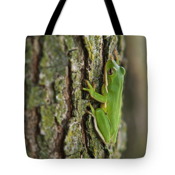 Green Tree Frog Thinking Tote Bag by Douglas Barnett
