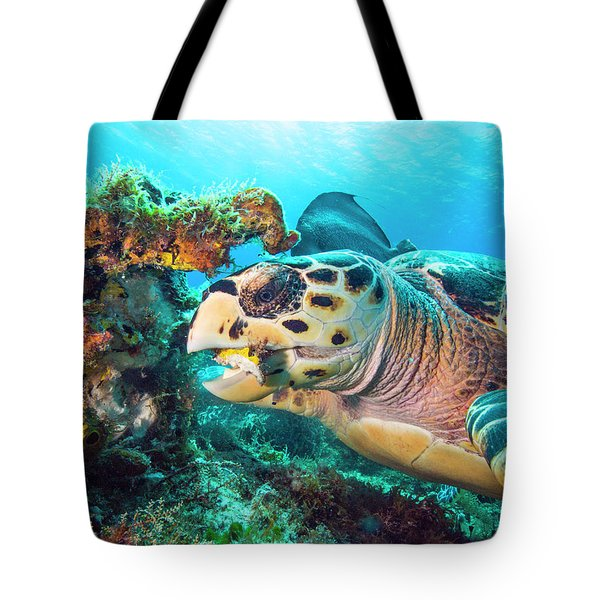 Green Turtle Dining Tote Bag