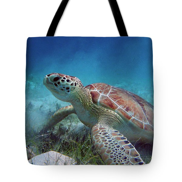 Green Turtle Tote Bag by Kimberly Mohlenhoff
