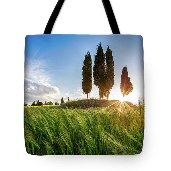 Green Tuscany Tote Bag by Evgeni Dinev