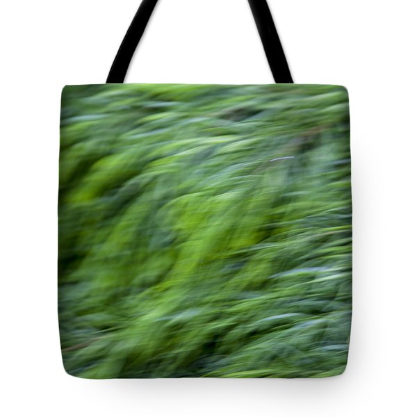 Green Waterfall 2 Tote Bag by Serene Maisey