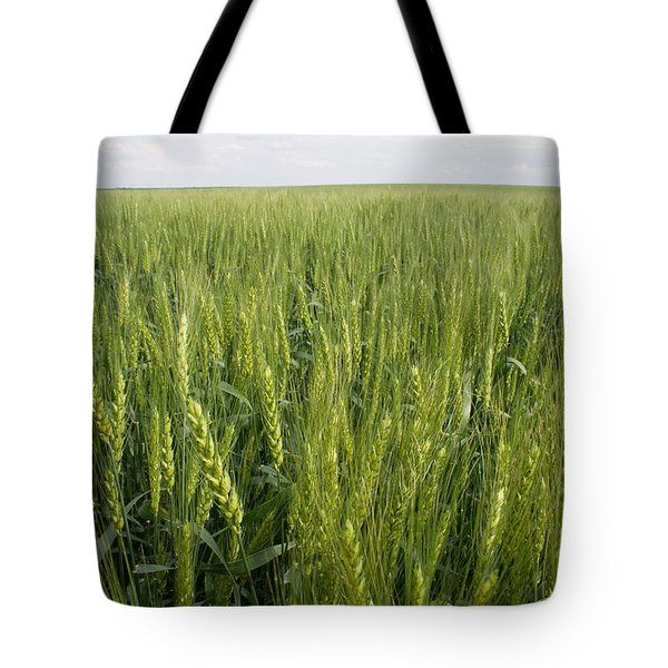 Tote Bag featuring the photograph Green Wheat by Dylan Punke