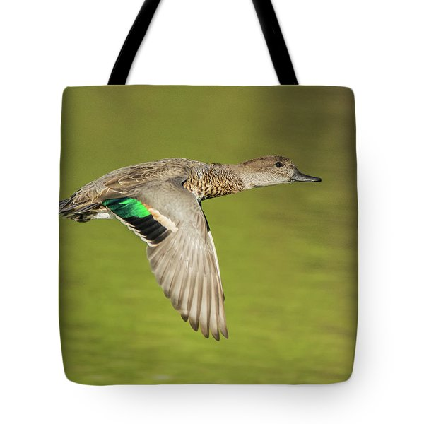 Green-winged Teal 6320-100217-2cr Tote Bag