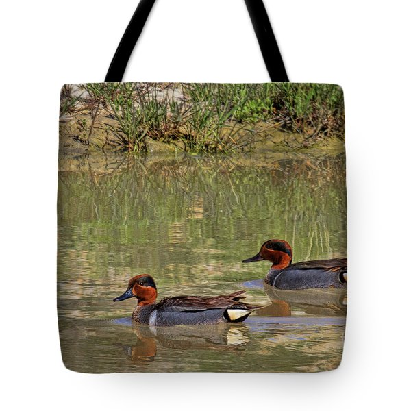Green Winged Teal Tote Bag