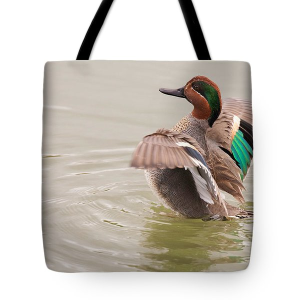Tote Bag featuring the photograph Green-winged Teal by Ram Vasudev