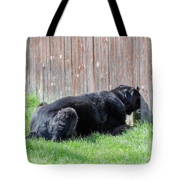 Greener Grass Tote Bag