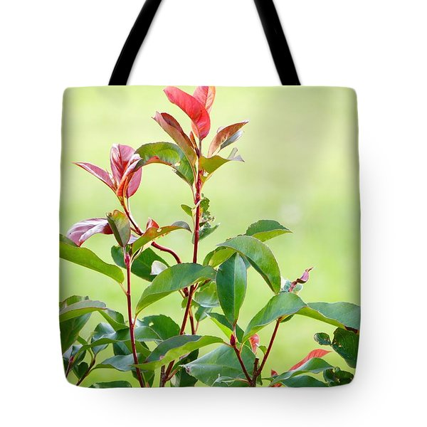 Tote Bag featuring the photograph Greenery And Red by Ivana Westin