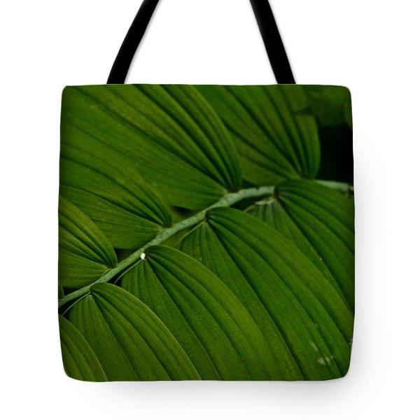 Greensleeves Tote Bag by Tim Good