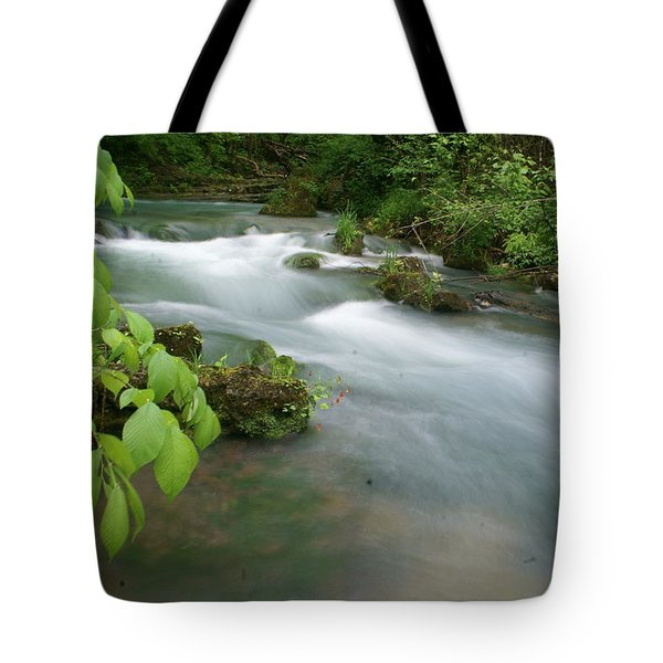 Greer Spring Branch 2 Tote Bag by Marty Koch