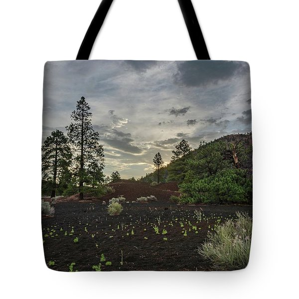Tote Bag featuring the photograph Greet The Day by Gaelyn Olmsted