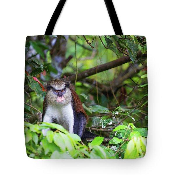 Grenada Monkey 2 Tote Bag