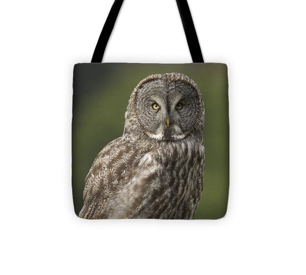 Great Gray Owl Portrait Tote Bag by Doug Herr
