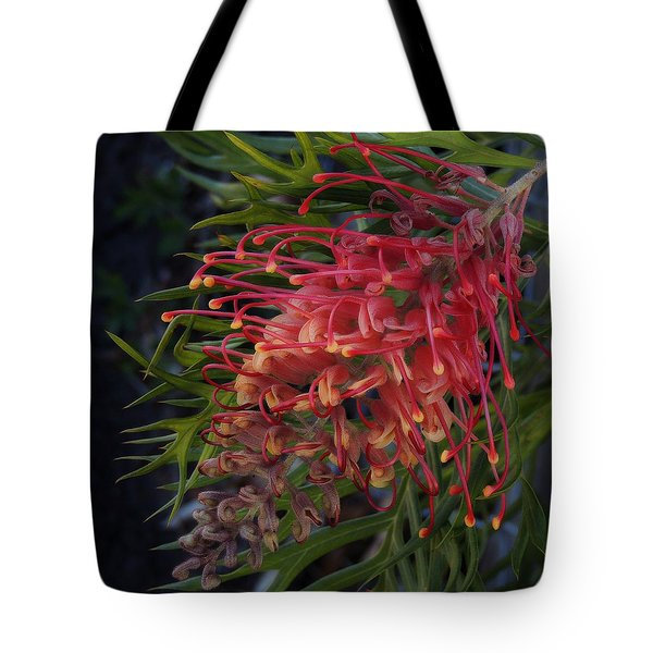 Grevillea Robyn Gordon Tote Bag