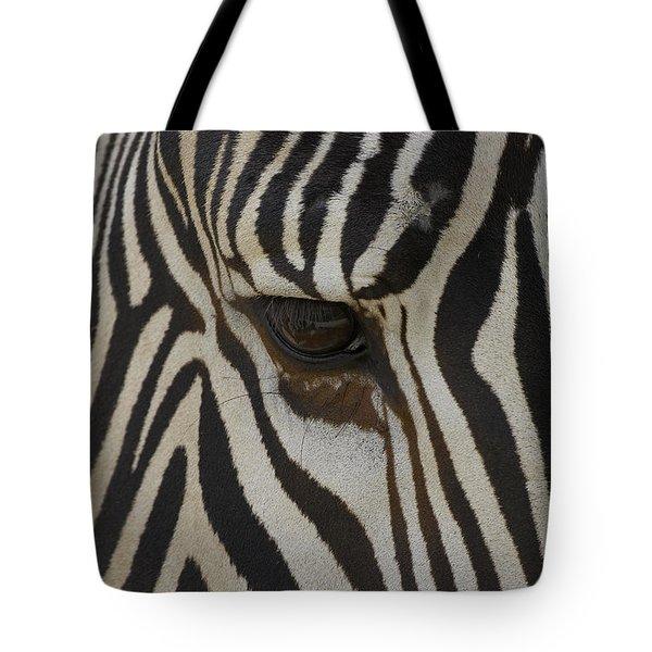 Grevys Zebra Equus Grevyi Close Tote Bag by Zssd