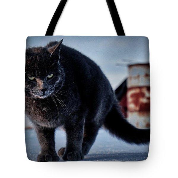 Grey Cat, Grey Mood Tote Bag