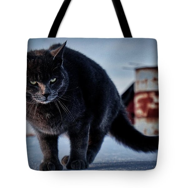 Grey Cat, Grey Mood Tote Bag