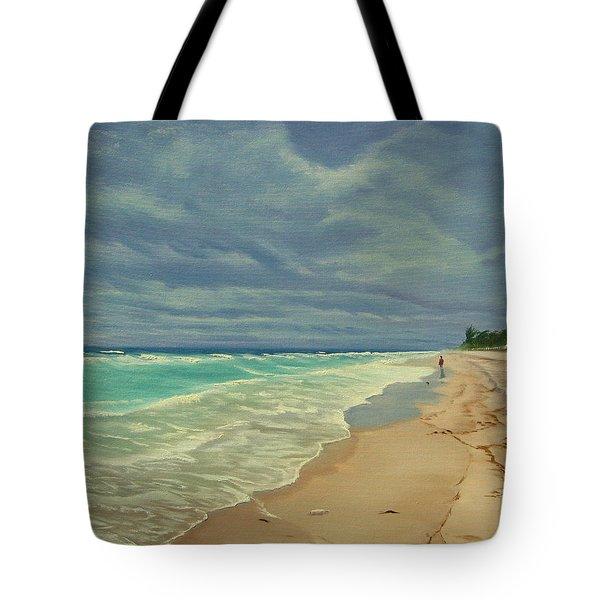 Grey Day On The Beach Tote Bag by Lea Novak