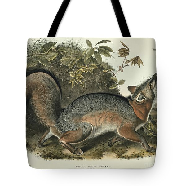 Grey Fox Tote Bag by John James Audubon